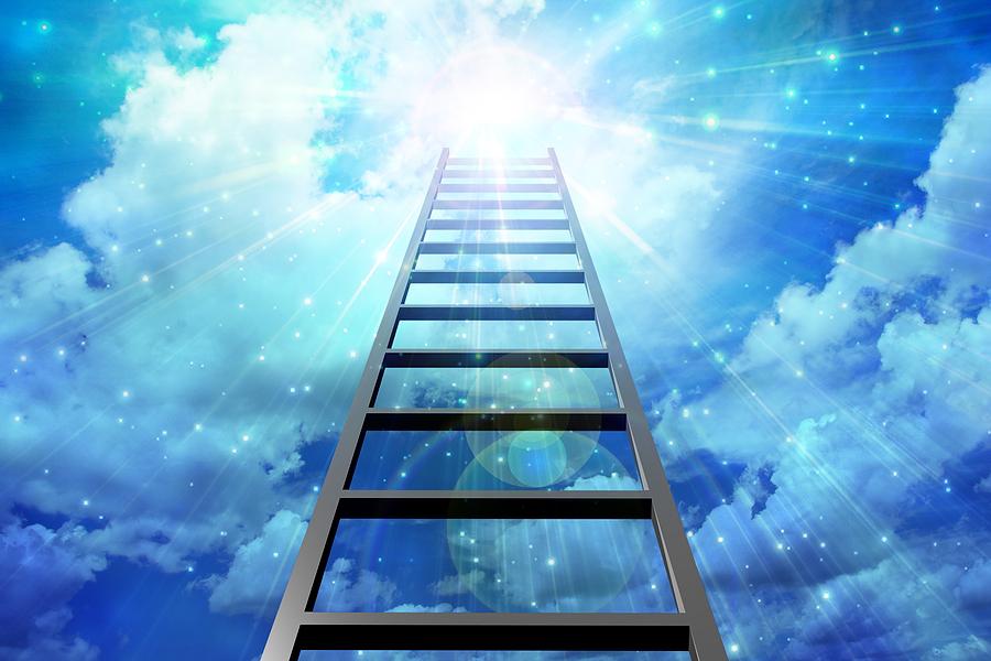 pta_ladders